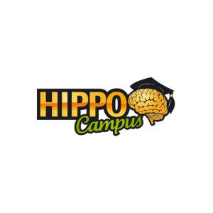 rema-logo-hippo-campus