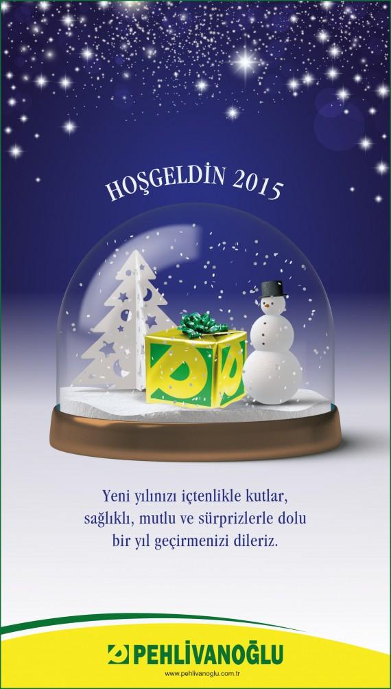 Pehlivanoğlu yeni yıl ilanı Yeni yılınız kutlu olsun 2015 mutlu yıllar 4x25 imaj ilanı snow globe